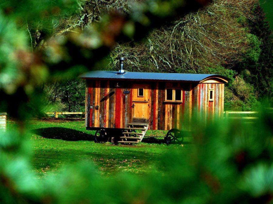 todo-movimiento-tiny-house-madera-prado-ruedas-bosque