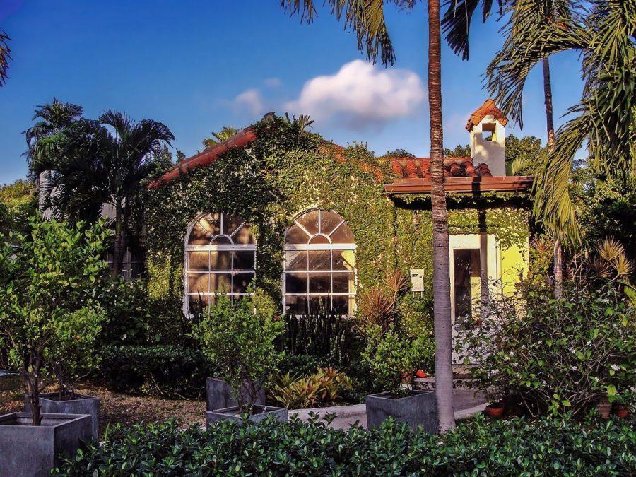 criterios-beneficios-casa-ecologica-plantas-pared-sol-jardin