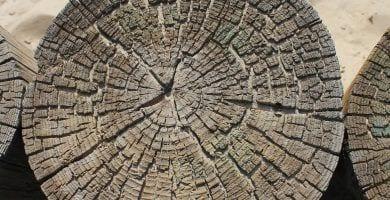 criterios-beneficios-construccion-casa-ecologica