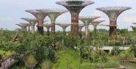 futuristasingapur