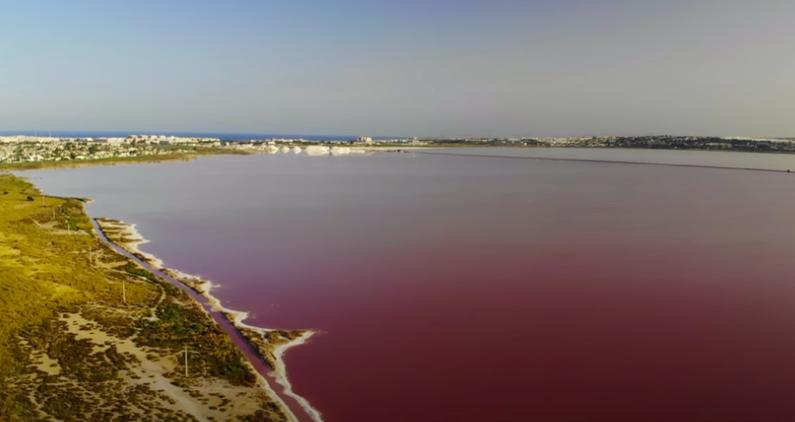 Laguna Salada Rosa de Torrevieja, un atractivo turístico único