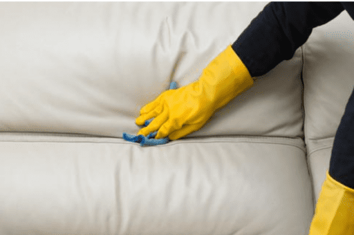 trucos para limpiar pieles 1